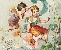 fairyes-illustration