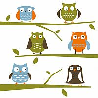 owls-illustration